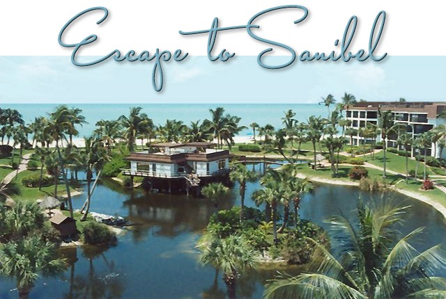 beachside sanibel cottages island beachfront beach rentals for cottage on the rental rent